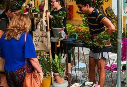 Pavilhão do Chá recebe 15ª edição da Feirica neste domingo