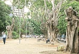 PBH lança novo edital do concurso para revitalização da Avenida Bernardo Monteiro