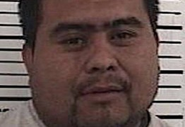 Imigrante ilegal em fuga é preso após parar para 'estuprar vaca'