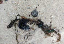 PEQUENA QUANTIDADE: Manchas de óleo voltam a aparecer no litoral da Paraíba