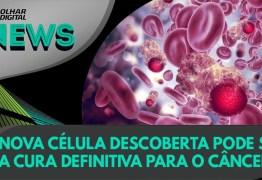 Nova célula descoberta pode ser a cura definitiva para o câncer