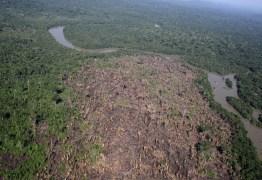 Mudanças climáticas podem aumentar queimadas no sul da Amazônia