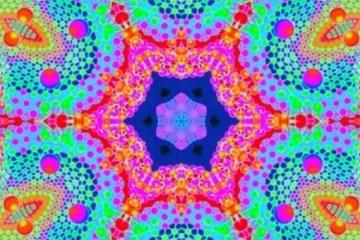 """Cogumelo mágico"" deixa humanos hiperconectados, afirmam cientistas"