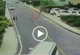 Virou notícia nacional: SBT repercute caso de cachorrinha atropelada e morta por Emerson Machado – VEJA VÍDEO