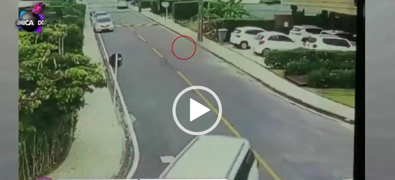 Capturar 6 - Virou notícia nacional: SBT repercute caso de cachorrinha atropelada e morta por Emerson Machado - VEJA VÍDEO