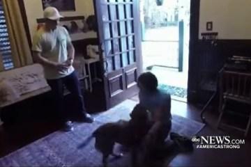 amor canino - QUASE UM ANO DE SAUDADE: Vídeo de reencontro de astronauta com cadela viraliza na internet