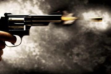 arma de fogo 6 - Homem é baleado pelas costas durante evento político na PB