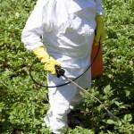"naom 5b51ab4e7016b - Brasil é o principal mercado de agrotóxicos ""altamente perigosos"""