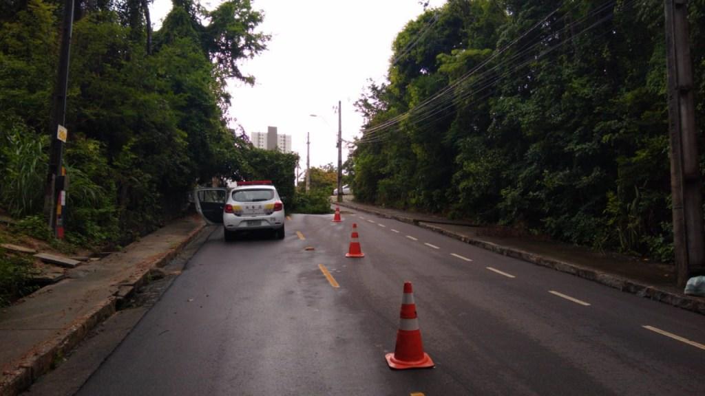 3917a703 6163 41e0 a379 d94f8af1e003 1024x576 - FORTES CHUVAS: Árvore cai durante a madrugada e interdita rua em João Pessoa