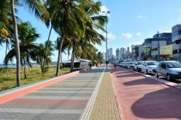 Prefeitura promove ações de preservação e recuperação de vegetação de restinga