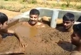 Grupo de indianos busca 'cura' para coronavírus em banho de fezes de vaca