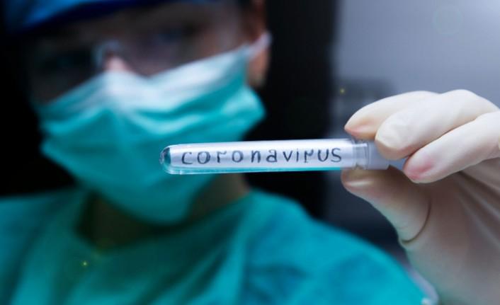koronavirus tedavisi icin ilk adim atildi virus yeniden yaratildi h10486 666e7 - Coronavírus: Paraíba tem sete casos suspeitos da doença