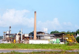 Usinas de cana-de-açúcar vão doar mais de 30 mil litros de álcool 70% para os hospitais da rede pública estadual e entidades do comitê de crise