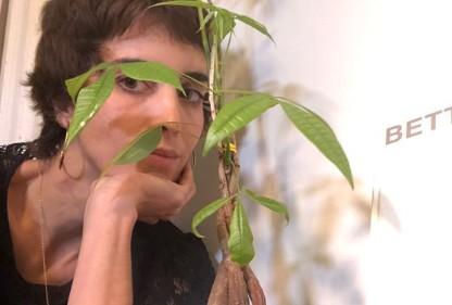 Capturars - FAKE NEWS: Planta ao fundo de repórter da Globo não é pé de maconha