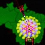 coronavirus brasil 30012020154227131 - Paraíba registra 11 óbitos por Covid-19; casos confirmados chegam a 79