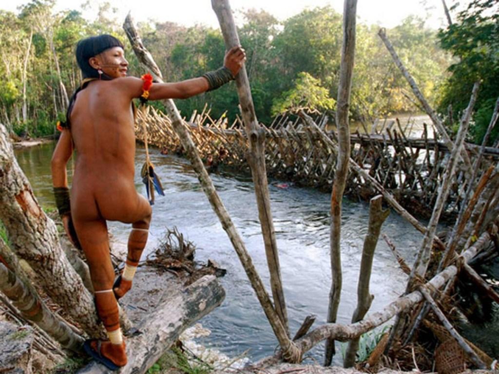 indio1 1024x768 - POVOS EM RISCO: 81 mil índios têm vulnerabilidade crítica à Covid-19, diz estudo