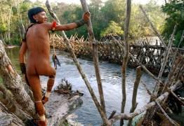 POVOS EM RISCO: 81 mil índios têm vulnerabilidade crítica à Covid-19, diz estudo