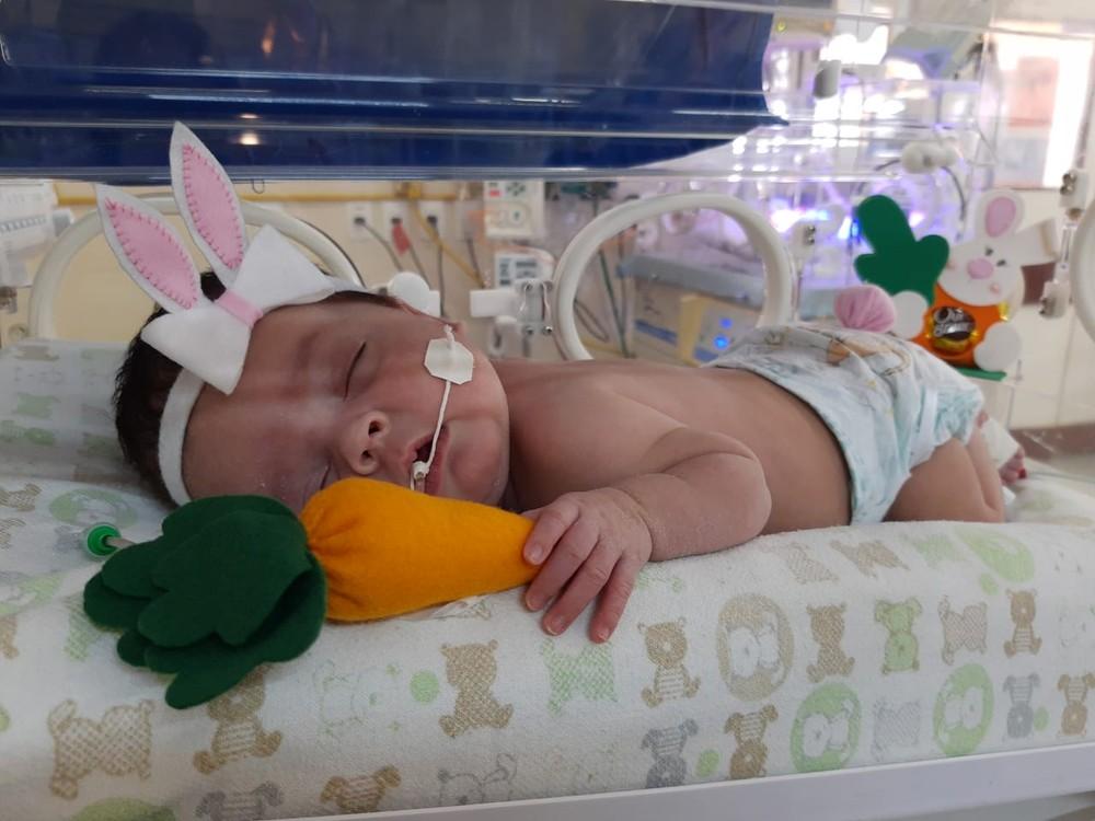 whatsapp image 2020 04 12 at 10.57.45 - HUMANIZAÇÃO DOS PACIENTES: Bebês de UTI Neonatal são fantasiados de 'coelhinhos da Páscoa'