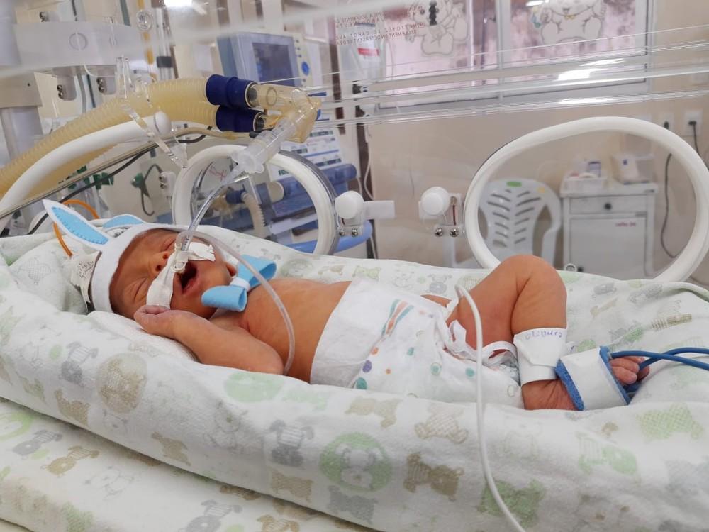 whatsapp image 2020 04 12 at 10.57.46 - HUMANIZAÇÃO DOS PACIENTES: Bebês de UTI Neonatal são fantasiados de 'coelhinhos da Páscoa'