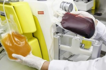 Paciente recebe plasma de pessoa curada do coronavírus no Hospital de Trauma de CG – VEJA VÍDEO