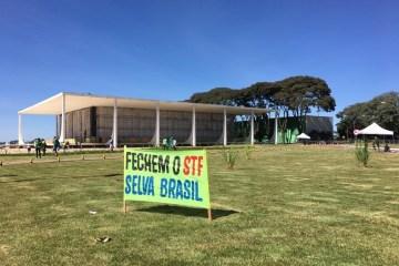 whatsapp image 2020 05 31 at 11.36.50 - Manifestantes fazem ato em Brasília em apoio a Bolsonaro e em defesa de medidas inconstitucionais