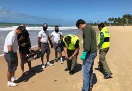 Fragmentos de óleo reaparecem no litoral do Nordeste