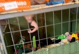 Três são presos por manter criança de 1 ano em jaula próxima a cobras