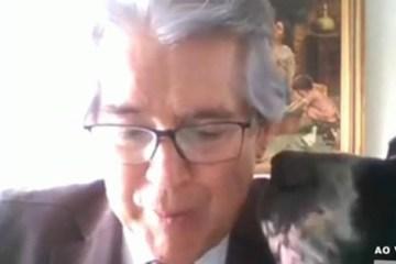um conselheiro do tce sp foi surpreendido por seu cao durante sessao online 1102135 - Cachorro 'invade' sessão online do TCE e fareja conselheiro: 'Deu uma babada no meu terno'; VEJA VÍDEO
