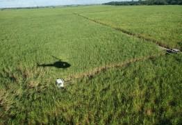 Com apoio de helicóptero, polícia recupera caminhão de botijão de gás roubado na Paraíba