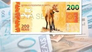 naom 5f415f530bca6 300x169 - Rede, Podemos e PSB vão ao Supremo contra nota de R$ 200