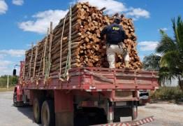 Caminhão que transportava madeira ilegal é apreendido pela PRF na Paraíba