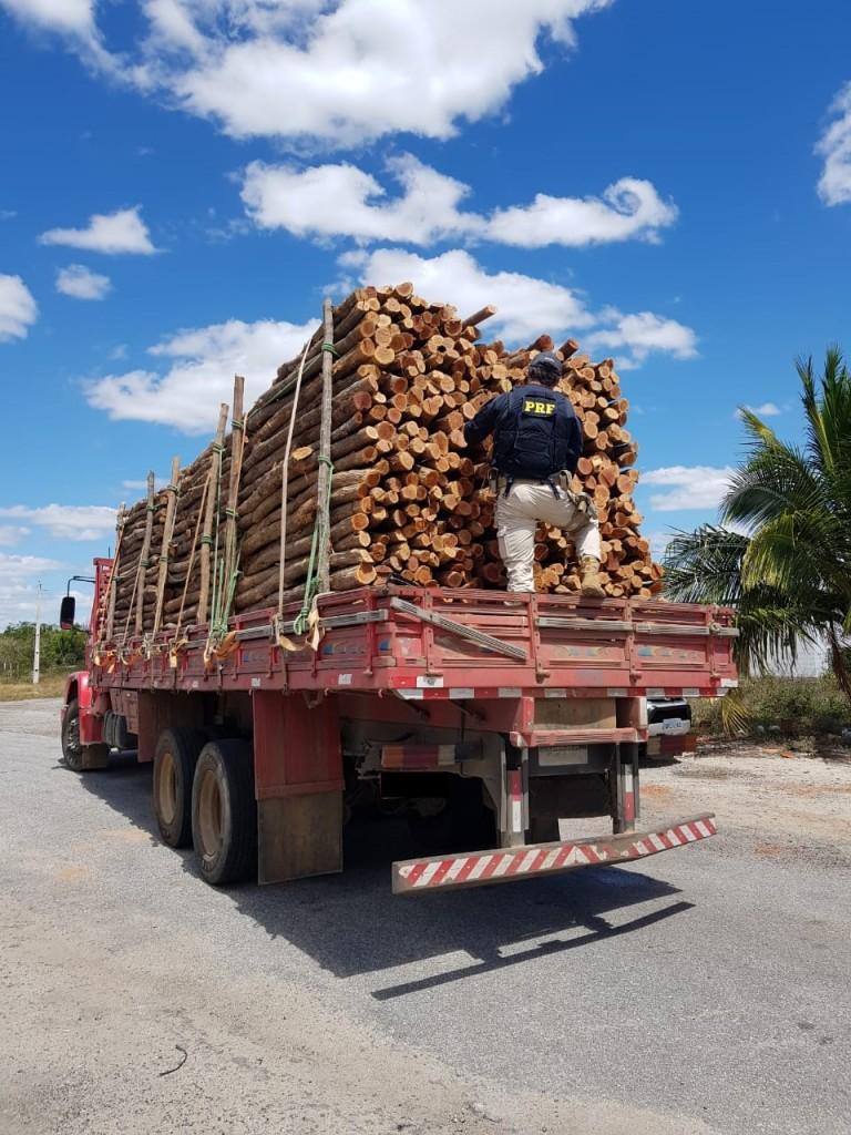 WhatsApp Image 2020 09 08 at 12.09.29 - Caminhão que transportava madeira ilegal é apreendido pela PRF na Paraíba