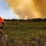 quiemadas pantanal bombeiro - TCU suspende contrato de imagens de satélites, e PF diz que operações contra queimadas ficam prejudicadas