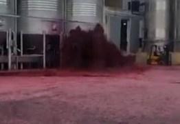 """Vazamento em tanque causa """"mar de vinho"""" na Espanha – VEJA VÍDEO"""