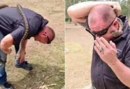 Homem é picado no rosto por cobra durante live