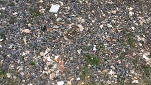 acacio gil borsoi 3 300x169 - Duplo arbítrio na UFPB: arte destruída, professor ameaçado - Por Danilo Matoso