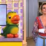 ana maria braga - DOR E FORMIGAMENTO: Ana Maria Braga descobre síndrome na mão e faz cirurgia