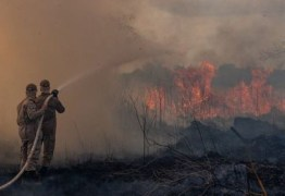 Ibama determina retorno do combate às queimadas em todo o país