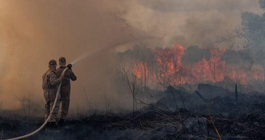 ibama - Ibama determina retorno do combate às queimadas em todo o país