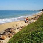 praia abricó - Praia de nudismo volta a receber visitantes apesar dos casos de covid-19 aumentarem