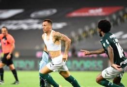 PALMEIRAS É O CAMPEÃO! Time venceu o Santos e se tornou bicampeão da Libertadores