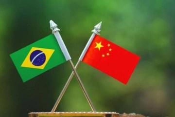brasil e china - Brasil depende da China para continuar vacinação - ENTENDA