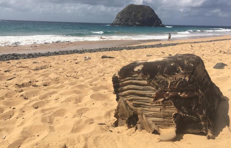 fardo de borracha leao foto fabio borges - Caixa misteriosa volta a ser encontrada em praia do Nordeste após mais de um ano