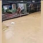 "idoso 1 - Vídeo mostra idoso ""pescando"" sacola de compras boiando em enchente"