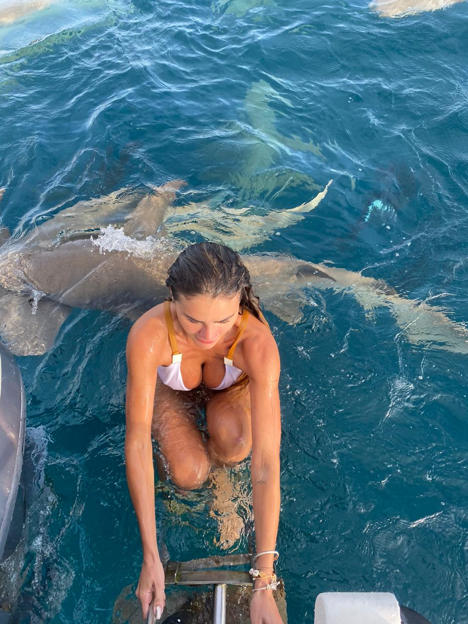 img 20210114 wa0002 - Bailarina do Faustão é atacada por tubarão durante mergulho - VEJA IMAGENS