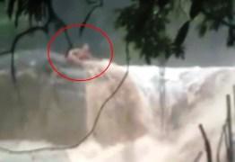 Rapaz é arrastado por cabeça d'água em cachoeira no litoral de São Paulo