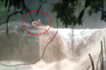 frame marcos00000001 - Rapaz é arrastado por cabeça d'água em cachoeira no litoral de São Paulo