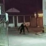 Capturar.JPGki  - Boato de 'criatura estranha' assusta moradores de ilha brasileira