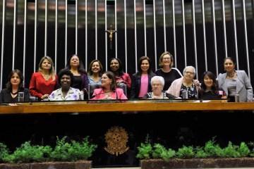 bancada feminina - Bancada feminina na Câmara destaca três Projetos de Lei que devem ter prioridade no Plenário durante o mês da mulher