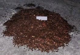 Patrão se revolta com pedido de demissão e acerta as contas com 91.500 moedas de 1 centavo